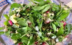 Салат майский дачный №1 – рецепт