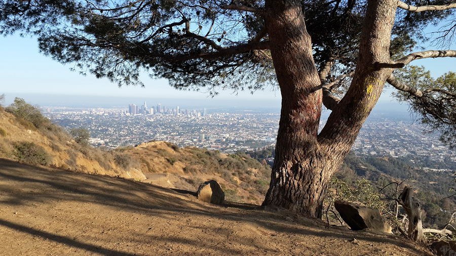 Los Angelos, Griffith Park